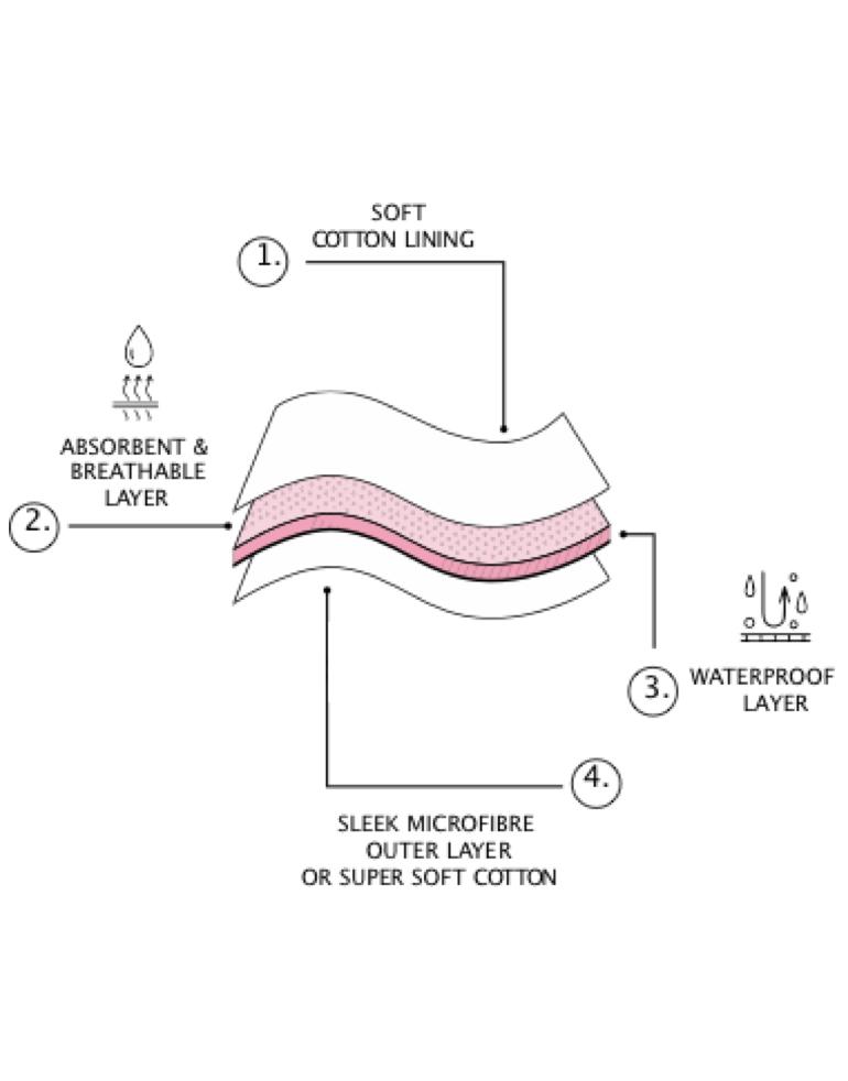 Period briefs diagram
