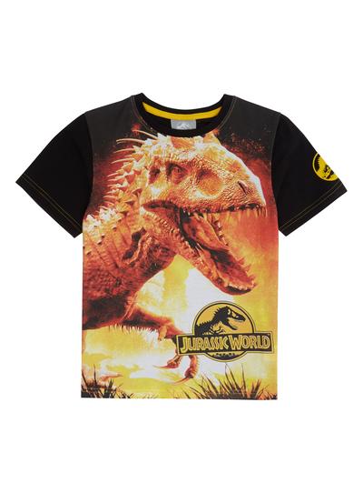 c6c44a7c Kids Boys Black Jurassic World T-Shirt (3-12 years) | Tu clothing