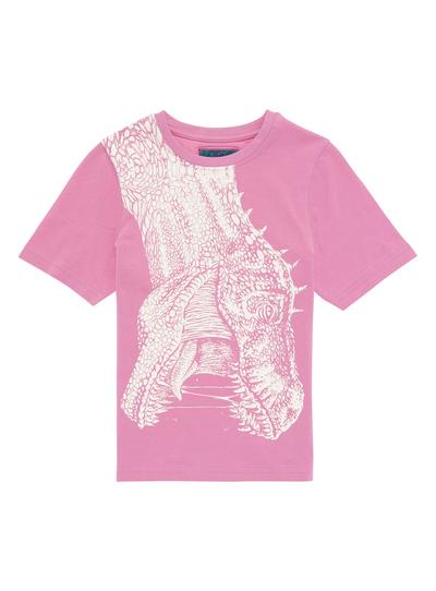 cc0ab1cd Kids Boys Pink Dinosaur T-shirt (3-12 years)   Tu clothing