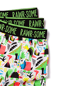 5 Pack Multicoloured 'Roarsome' Trunks (3-12 years)