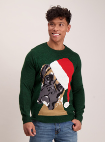 Green Santa Boxer Dog Jumper