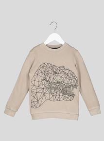 Geometric Dino Sweatshirt (3-14 Years)
