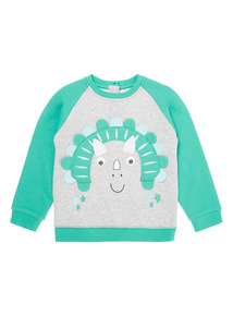 Boys Green Dino Sweatshirt (0-24 months)