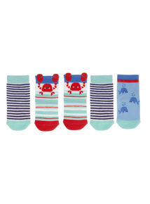 Little Nipper Socks 5 Pack