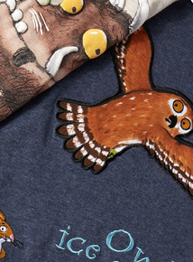 2 Pack Multicoloured Gruffalo Long Sleeve T-Shirts (9 Months- 6 Years)