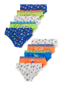 10 Pack Multicoloured Dino Briefs (2-6 years)