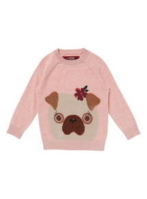 Pink Dog Jumper (3-14 years)