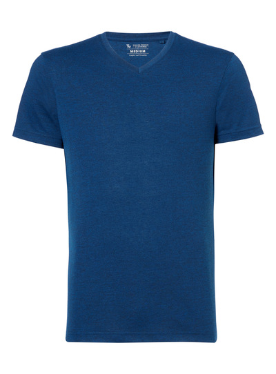 Online Exclusive Blue Plain V-Neck T-Shirt