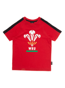 Boys Multicoloured Wales Rugby Tee (1-14 years)