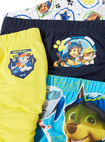 5 Pack Multicoloured Paw Patrol Briefs (18 months-6 years)