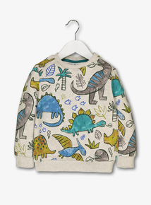 Multicoloured Dinosaur Sweatshirt (12 Months - 6 Years)