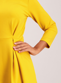 Mustard Textured High Neck Fit & Flare Dress