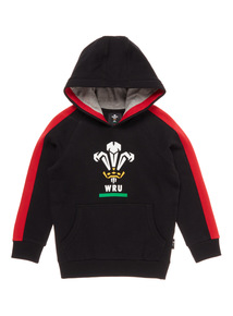 Boys Multicoloured Wales Rugby Hoodie (1-14 years)