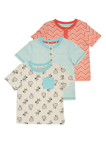 Safari Zebra Tees 3 Pack (0 - 24 months)