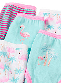 10 Pack Multicoloured Flamingo Stripe Briefs