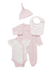 Pink Swan Starter Set (Newborn-12 months)