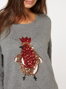 Sequin Robin Jumper