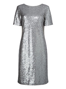 Online Exclusive Silver Sequin Dress