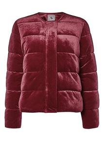Online Exclusive Padded Velvet Bomber Jacket