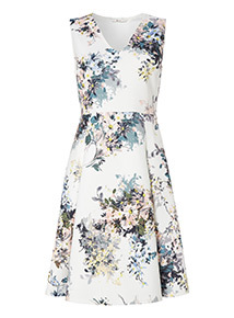 Online Exclusive Multicoloured Floral Fit and Flare Dress