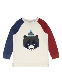 Multicoloured Raglan Sleeve Bear Tee (9 months-6 years)