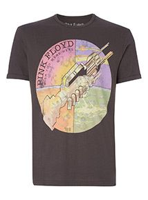 Grey Pink Floyd 'Wish You Were Here' Placement T-Shirt