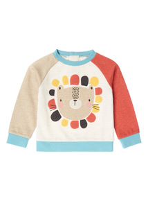 Multicoloured Safari Lion Jumper (0 - 24 months)