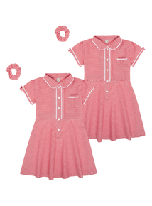 Girls Red Classic Gingham Dress (3-12 years)