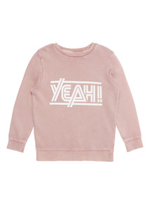 Boys Washed Pink Jumper (3 - 12 years)