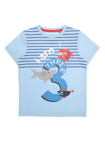 Boys Multicoloured 'I Am 3' T-shirt (2-4 years)